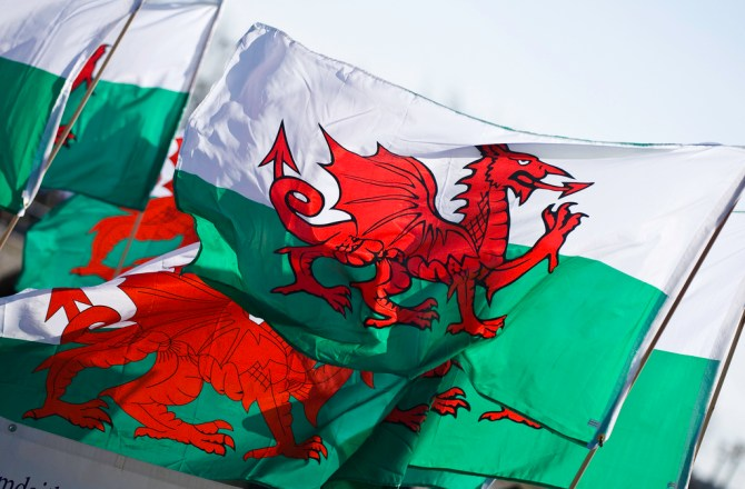Three Reasons Why Adopting a Welsh Language Policy Can Enhance Your Business
