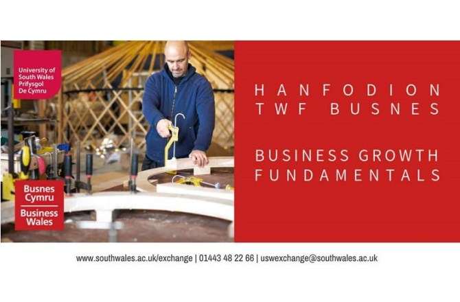 <strong> 4th June – Newport  </strong><br> Business Growth Fundamentals : Workshop 1