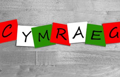 Cymraeg 2050 – £300k Grant Funding to Increase the Number of Welsh Speakers