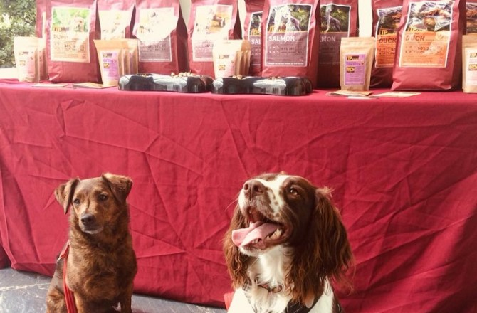 Carmarthenshire Dog Business Gets off to Pawsitive Start