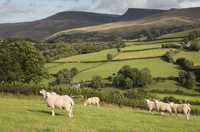Barclays Extends its UK Farming Loan Fund to £200M