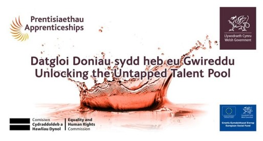 <strong>3rd December – Cardiff </strong><br>Apprenticeships &#8211; Unlocking the Untapped Talent Pool