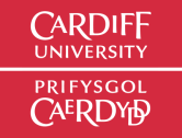 <strong>19th November – Cardiff</strong><br>SEO Workshop