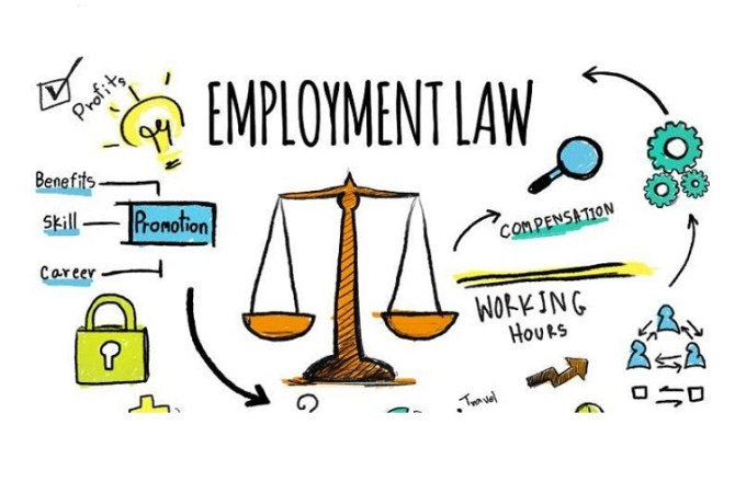 <strong>28th November – Pontypridd </strong><br>Employment Law Training