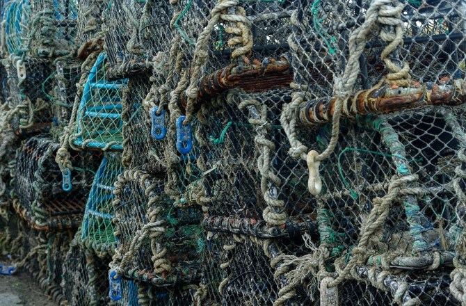 Non-Tariff Barriers Could Kill the Welsh Fishing Industry