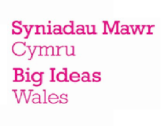 <strong> 27th March – Swansea </strong><br> Big Ideas Celebrated