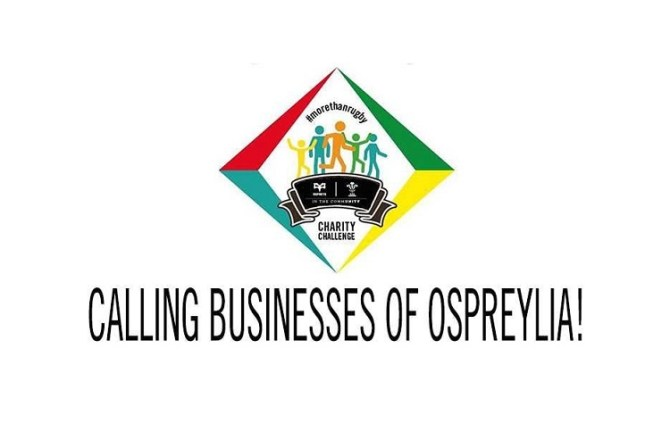 Ospreys Calls on Local Businesses to Join Fundraising Challenge