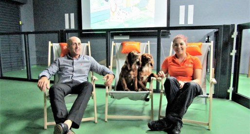 Pet Chain Opens UK's First Cinema and Coffee Bar for Dogs