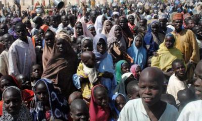Famine Averted in Nigeria, But Millions Still at Risk—UN Warns