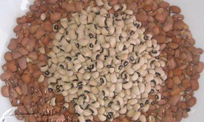 EU Lifts Ban on Nigerian Beans