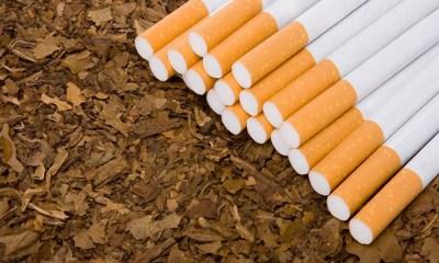 Tobacco Regulation