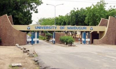 Bomb Rocks University of Maiduguri, Kills Professor