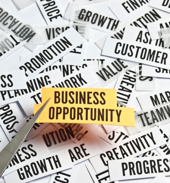 Business Opportunities Russia Africa