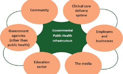 public health delivery model