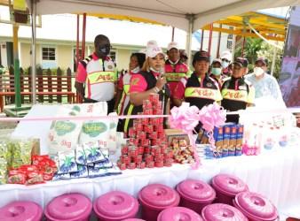 Arise Pink Bucket Palliatives