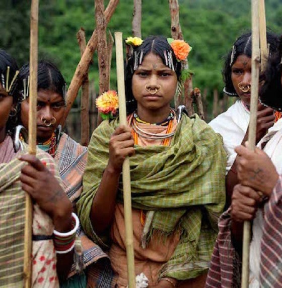 forest tribes