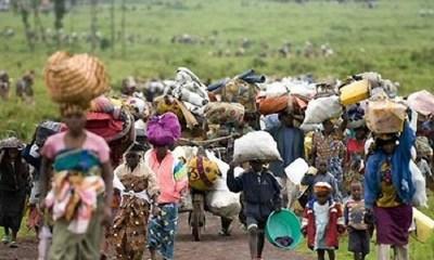 Refugees to Nigeria