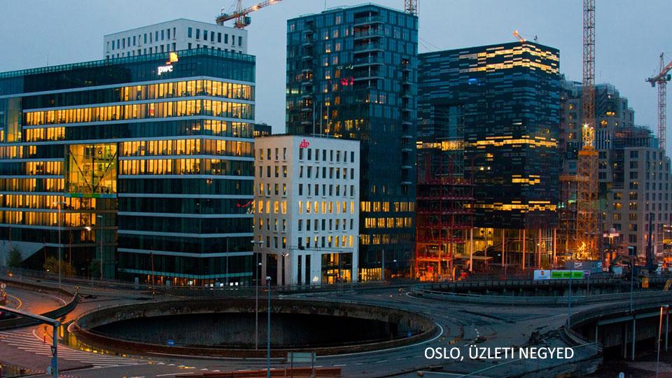 norvég szakfordítások cégeknek