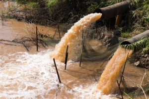 surface water pollutants