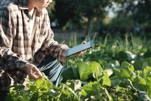 tech horticulture