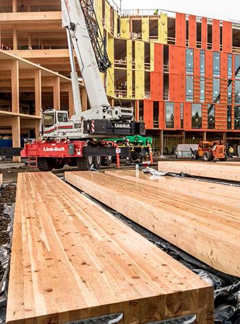 Swinerton Mass Timber Dimensional Lumber