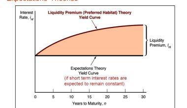 yield curve theories and risk