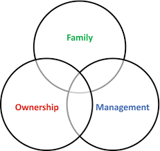 Three circle model of family business succesion planning