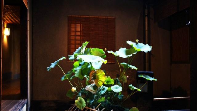 俵屋旅館のつぼ庭2