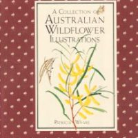 A Collection Of Australian Wildflower Illustrations