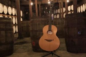 bushmills-guitar