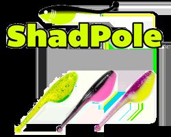 landing-shadpole