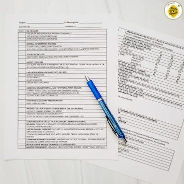 IEP cheat sheet example