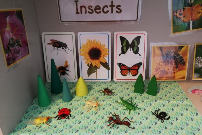 Shelfie - Theme - Minibeasts - Insects - Animals - Caterpillars - Butterflies - Moths - Matching - Communication and Language - Fine Motor Skills - Puzzles - Games - Toddler ideas - Preschooler - Books - Small World - Grimms Toys - Wooden Toys