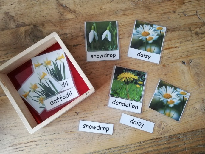 Three Part Montessori Inspired Cards Spring Flowers