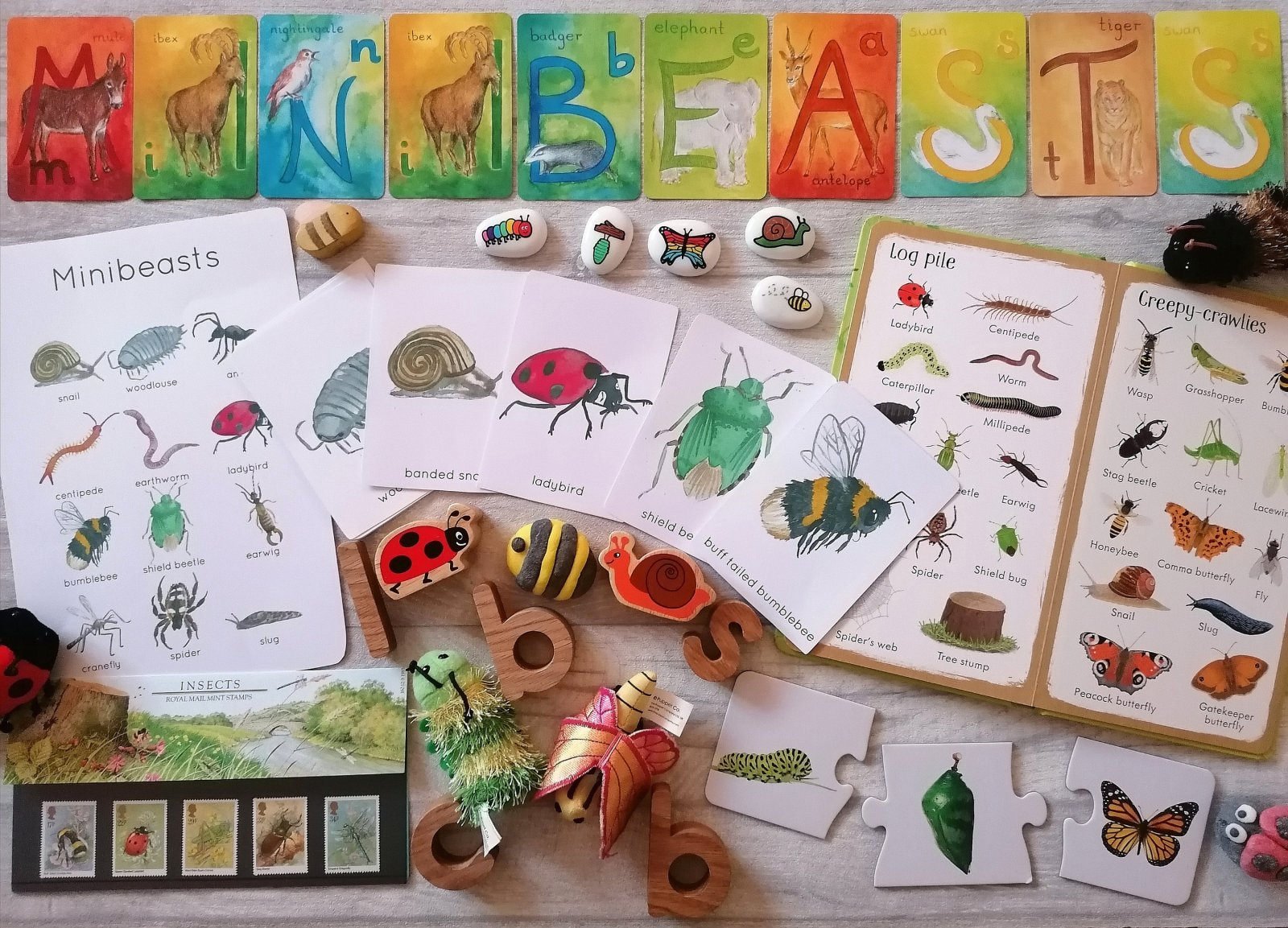 Selection of minibeast resources for nature exploring