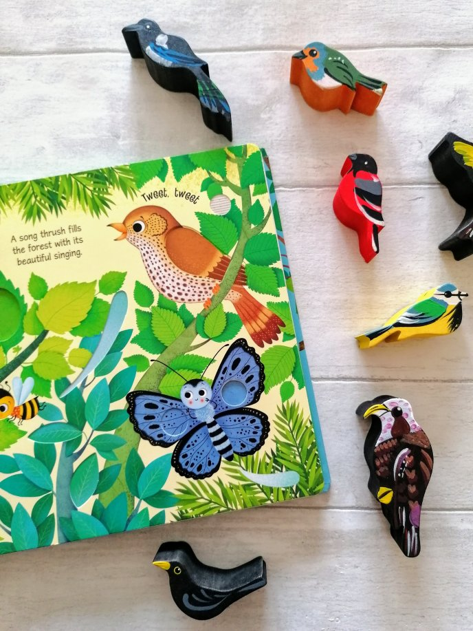 Bird Sounds Usborne Book
