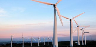 Unlocking the business benefits of renewable energy - WePower head
