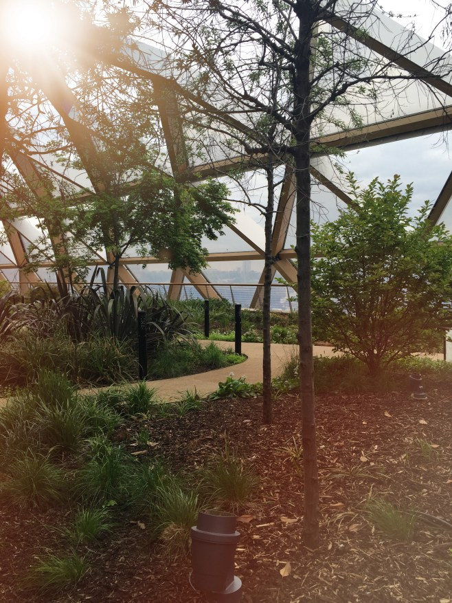 crossrail_place_roof_garden (1)
