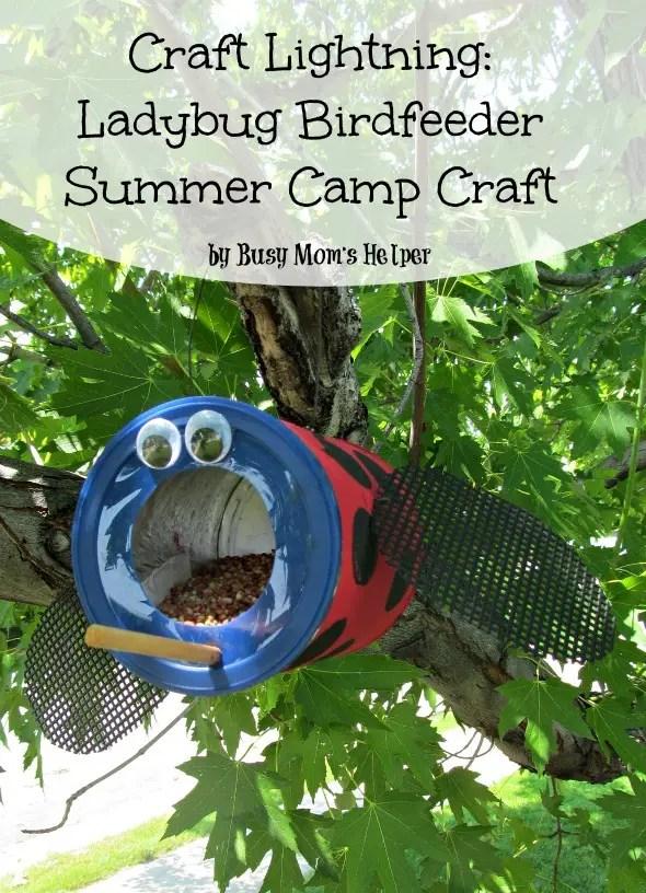 Craft Lightning: Ladybug Bird Feeder Summer Camp Craft / by Busy Mom's Helper #summercamp #kidcraft