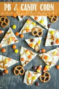 Blogger Spotlight: Something Swanky / by Busy Mom's Helper #favoritebloggers #recipes