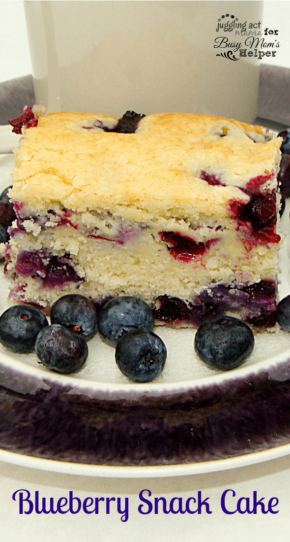 Blueberry Snack Cake makes a delicious afterschool treat