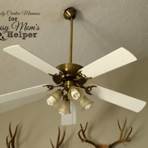 Ceiling Fan Update