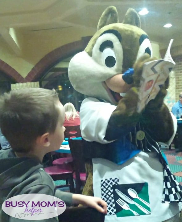 No more boring lines at Disneyland - grab our 2016 'Unofficial' Disneyland Activity & Autograph book to keep the kids happily entertained! Chip & Dale Autograph Page