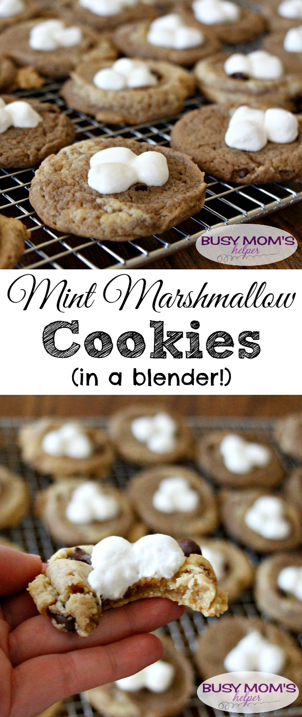 Mint Marshmallow Cookies (in a blender!) by BusyMomsHelper.com