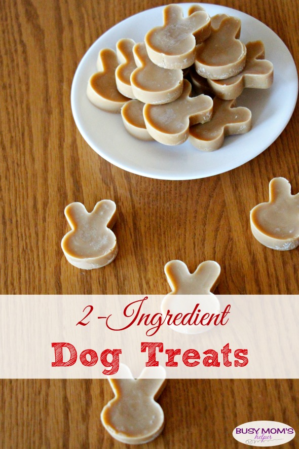 Including Pets in Your New Years Resolutions PLUS 2-Ingredient Dog Treat Recipe #SwifferFanatic #Ambassador