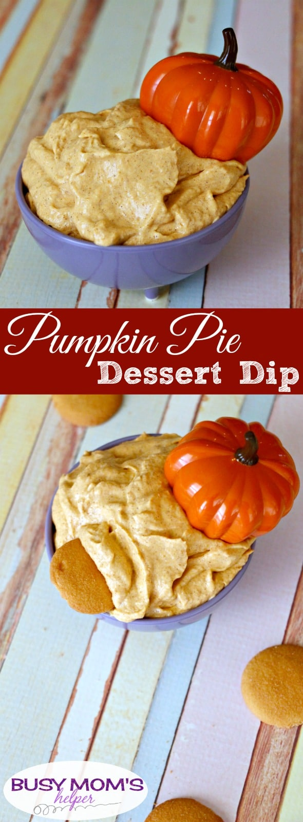 Pumpkin Pie Dip - a delicious, creamy dessert dip perfect for parties!