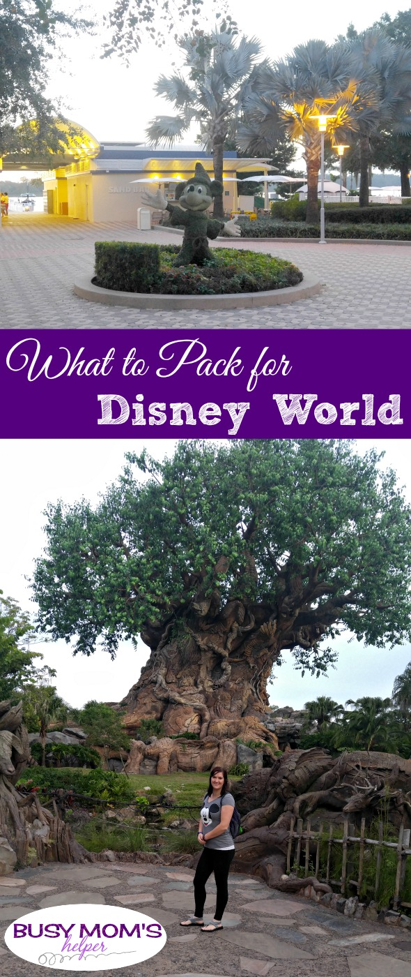 Tips for What to Pack for a Disney Vacation #disneyworld #disneyland #waltdisneyworld #pack #travel #packingtips #disneypacking #familyvacation #familytrip #disneytrip