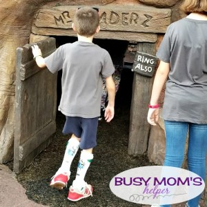 Our Experience with Disney Parks Disability Access Service