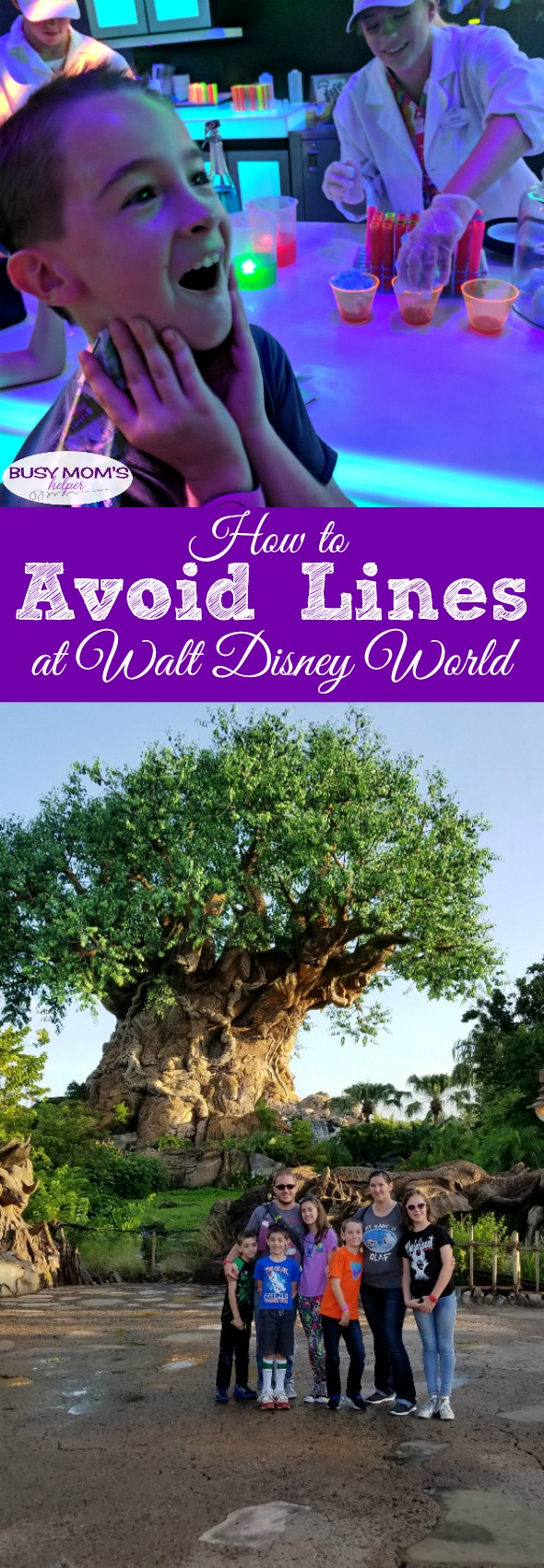 How to Avoid Lines at Walt Disney World #partner #waltdisneyworld #travel #michaelsvips #tourguide #disneyparks #disneytrip #disneytips #familytravel