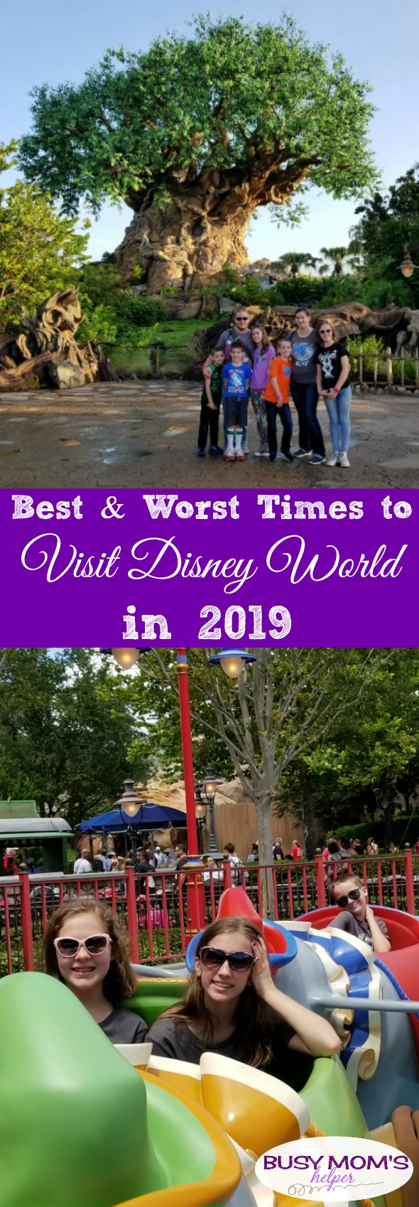 Best & Worst Times to Visit Disney World in 2019 #disneyworld #travel #familytravel #disney #waltdisneyworld #disneyparks